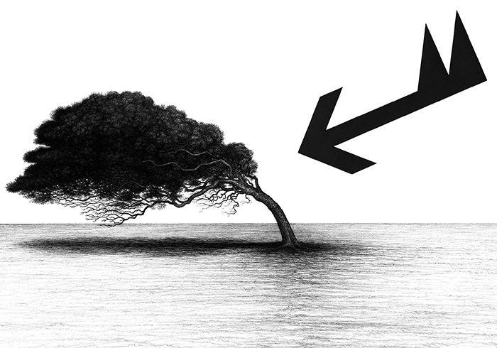 raffica e albero