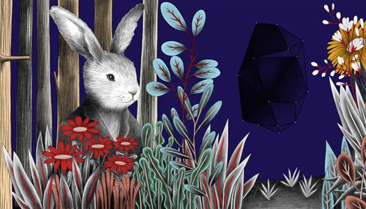 amabili resti-coniglio